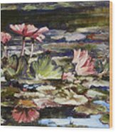 Waterlilies Tower Grove Park Wood Print