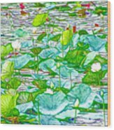 Waterlily Blossoms On The Protected Forest Lake Wood Print