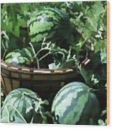 Watermelon In A Vegetable Garden Wood Print by Lanjee Chee