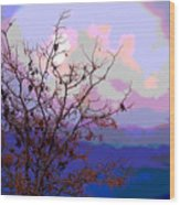 Watermelon Sky Wood Print by Barbara Schultheis