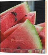 Watermelon Time Wood Print