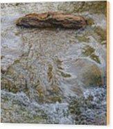 Watermovementstudy 1.1 Wood Print
