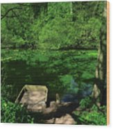 Water's Edge Wood Print