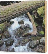 Waters Run Through It Wood Print