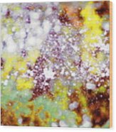 Waters Spray In Summers Delight Wood Print