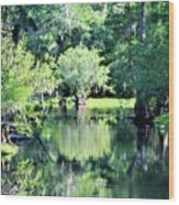 Waterscape #1 Hillsborough River Wood Print