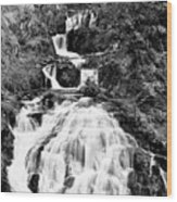 Water Slide Waterfall Bw Wood Print