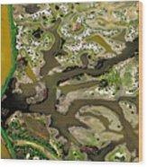 Waterworks 13 Wood Print