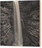 Watkins Glen Cavern Cascade #5 Wood Print