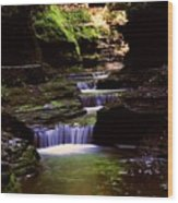 Watkins Glen Gorge In Summer Wood Print