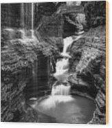 Watkins Glen Rainbow Falls #2 Wood Print