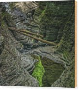 Watkins Glen State Park New York_dsc9599_16 Wood Print