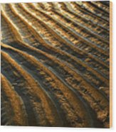 Waves Of Gold Wood Print