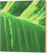 Waves Of Green Wood Print