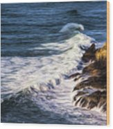 Waves Rocks And Birds Wood Print