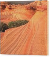 Wavy Sunset Curves Wood Print