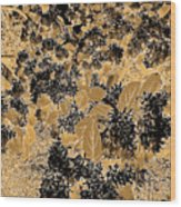 Waxleaf Privet Blooms On A Sunny Day In Black And White - Color Invert With Golden Tones Wood Print