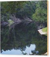 Way Down Upon The Suwannee River Fisheye Wood Print