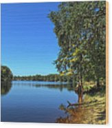 Way Down Upon The Swuanee River In Hdr Wood Print