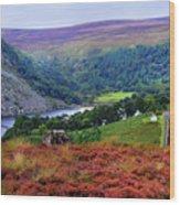 Way Home. Wicklow. Ireland Wood Print