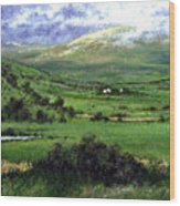 Way To Ardara Ireland Wood Print