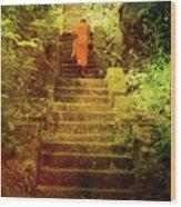 Way To Buddha's Temple Wood Print