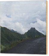 Way To Dhanaulti Wood Print