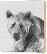 Wb Portrait Of A Bear Wood Print