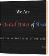 We Are the United States of America Wood Print