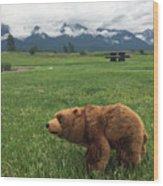 We Saw A Bear Wood Print