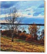 Wealth Of The Autumn Season Wood Print