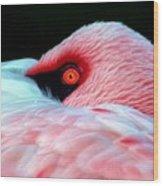 Wearing Pink Wood Print
