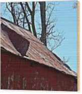 Weathered Barn Roof- Fine Art Wood Print