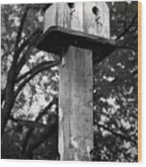 Weathered Bird House Wood Print