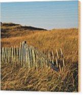 Weathered Dune Fence. Wood Print