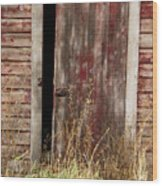 Weathered Entrance Wood Print