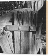 Weathered Fence In Black And White Wood Print