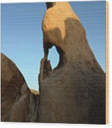 Weathered Rock Wood Print