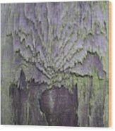Weathered Wood And Lichen Abstract Wood Print