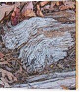 Weathered Wood Wood Print