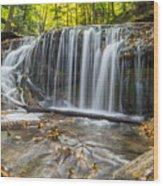 Weaver's Creek Falls Wood Print