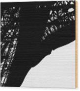 Web Of Steel Wood Print