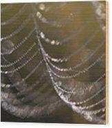 Web Sparkle Wood Print