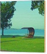 Webster State Park Wood Print