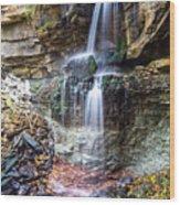 Webwood Falls Wood Print