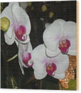 Wedding Orchids Wood Print