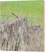 Weeds 008 Wood Print