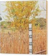 Weeds 035 Wood Print