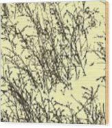 Weeds In Snow Wood Print