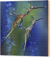 Weedy Sea Dragon Wood Print